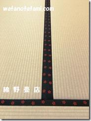 haizakura (2)